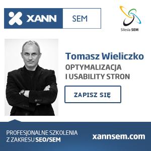 Tomasz Wieliczko audyt i optymalizacja stron
