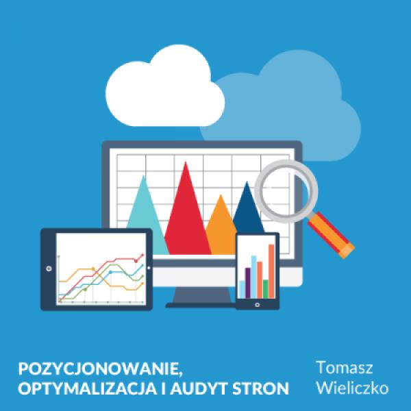 Optymalizacja i audyt stron oraz sklepów internetowych